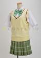 ToLOVEる/To LOVEる-とらぶる-ダークネス/私立彩南高校女子制服 スカート