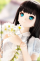 AZONE/Iris Collect/Iris Collect りの / In the wind~初夏の風の中で~ AOD513-RIW