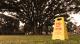けものフレンズ/けものフレンズ/けものフレンズ【ほむこす】ジャパリパークフロアスタンド