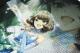 THE IDOLM@STER/アイドルマスター シンデレラガールズ/★限定★夜風の誘い 高垣楓フルグラフィックTシャツ[両面プリント]