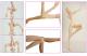 オビツ製作所/Obitsu Body/50BD-F01W-G 50cmオビツボディ