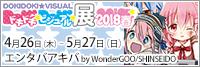 ドキドキ★ビジュアル★展覧会2018春