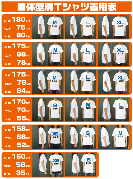 Tシャツ5001モデル 体型別着用表