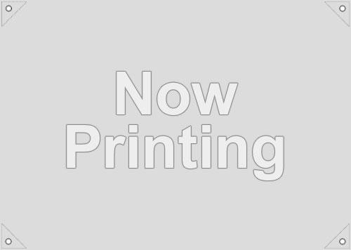アニメ描き下ろしイラスト使用フラッグ(サイズ:90×64cm)