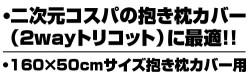 メーカーオリジナル/二次元COSPAオリジナル/抱き枕 BODY(160cm)