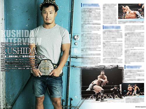 新日本プロレスリング/新日本プロレスリング/Road to DESTRUCTION 2015 パンフレット