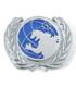 国連G対策センター ピンズ