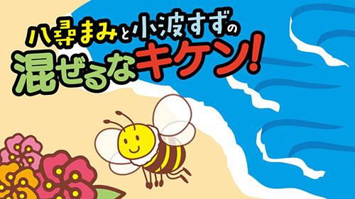 メーカーオリジナル/音泉/DJCD「八尋まみと小波すずの混ぜるなキケン!」