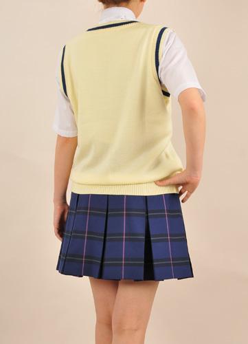 ときめきメモリアル/ときめきメモリアル4/きらめき高校新制服 ニットベスト